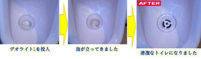 loghtL.jpg