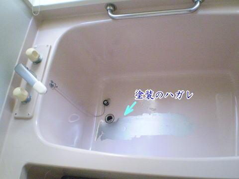 takara-standard1.jpg