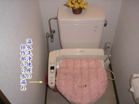 toilet111.jpg